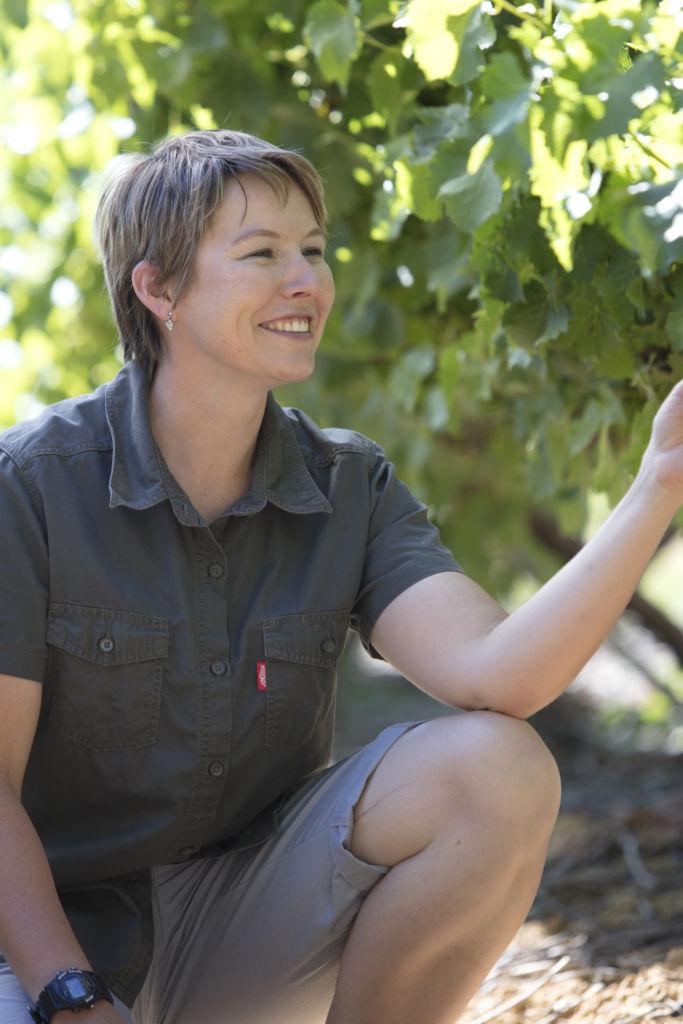 talitha-venter-backsberg-viticulturist
