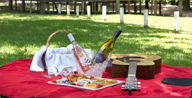 Image result for valentines picnic